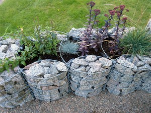 Gabioner trädgård